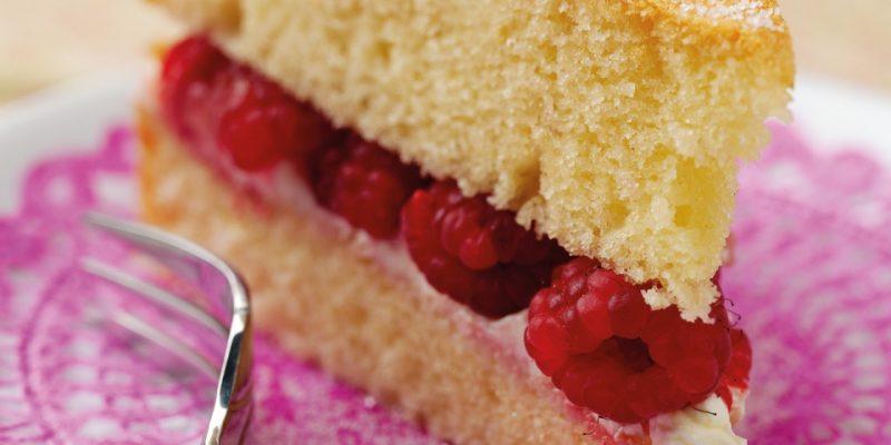 fat free sandwich cake